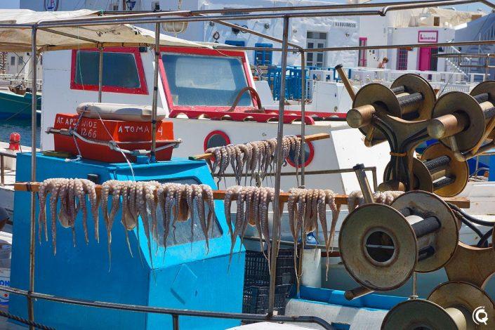 Port de Náoussa