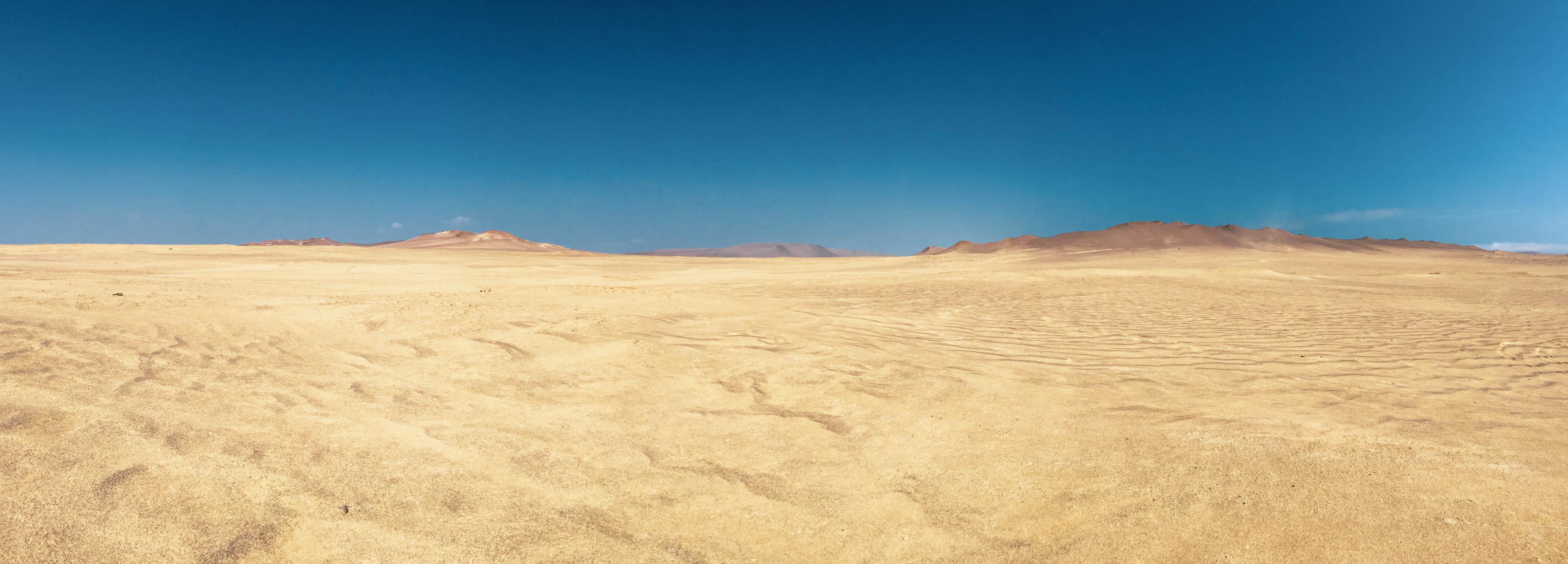 Réserve naturelle de Paracas au Pérou